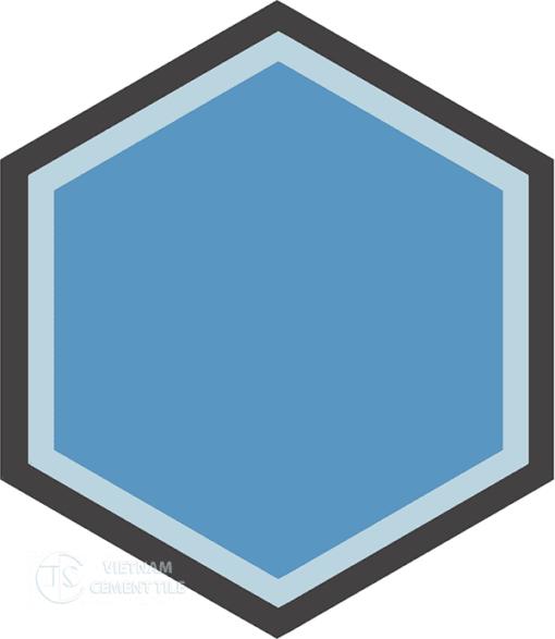 Gạch bông lục giác CTS H404.1(2-13-31) - Encaustic cement tile Hexagon CTS H404.2(2-13-31)